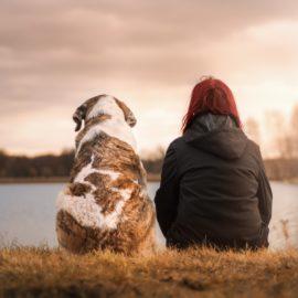Migliori amici dell'uomo…e della nostra longevità!